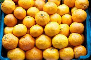 laranjas em um mercado