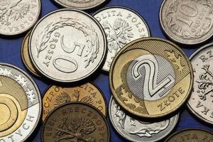 moedas da polônia foto