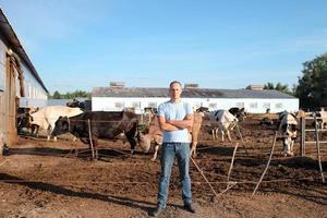 agricultor está trabalhando na fazenda com vacas leiteiras foto