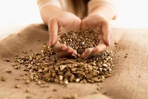 closeup de mulher segurando monte de pepitas de ouro nas mãos foto