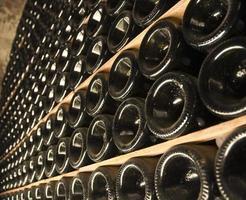 garrafas de vinho em uma adega
