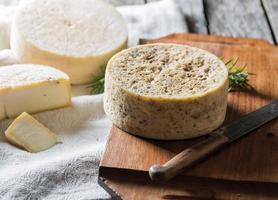 queijo de cabra francês foto