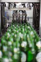 garrafas em cervejaria foto