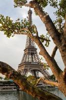 Sena em paris com a torre eiffel na hora do nascer do sol foto