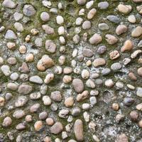 fundo de textura de terra firme