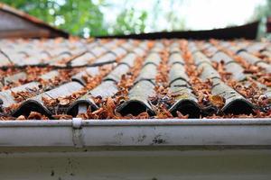 muitas folhas de outono em um telhado