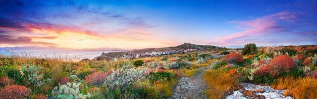 pôr do sol na vegetação mediterrânea foto