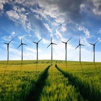 campos de trigo com turbinas eólicas foto