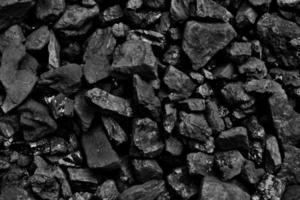 carvão foto