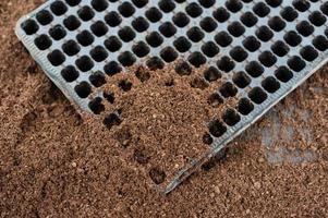 bandeja de plástico com o solo