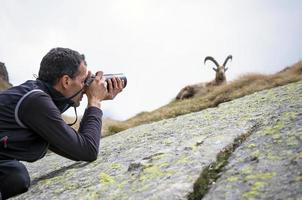 fotógrafo de vida selvagem