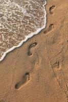 pegadas na areia foto
