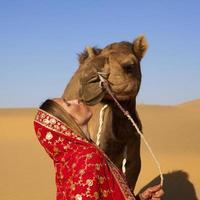 beijando um camelo.