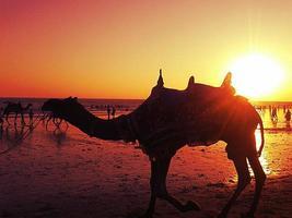 praia indiana