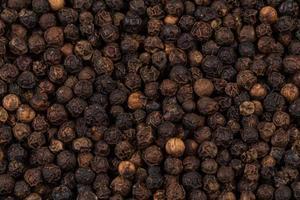 pimenta preta ampliada