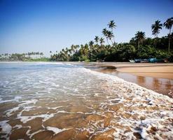 praia tropical intocada com barco de pesca no sri lanka foto