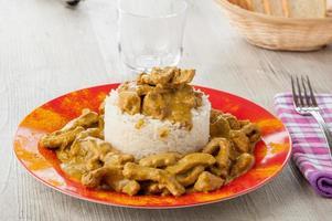 caril de frango servido com arroz branco foto