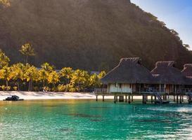 manhã na ilha tropical.