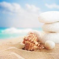 paisagem com pedras e conchas na praia tropical foto