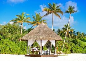 local do casamento tropical. céu azul e palmeiras foto