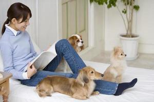 tempo descontraído de cachorro e mulher foto