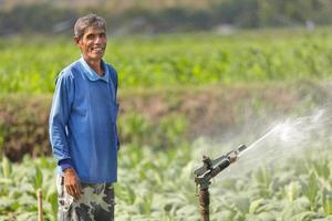 planta molhando do fazendeiro asiático foto