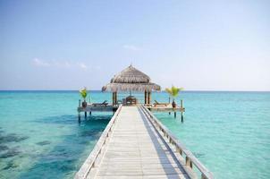 sonho de ilha tropical
