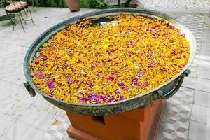 botões de flores tropicais flutuando em uma bacia foto