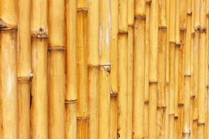 fundo de cerca de bambu foto
