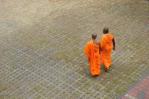 monges budistas foto