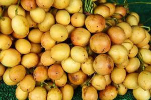 baccaurea ramiflora na tailândia foto