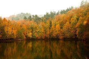 Parque Nacional foto