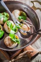 degustação de caracóis assados foto