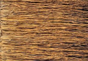 superfície amarela da grama seca foto