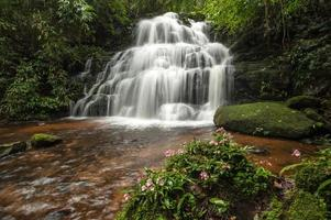 cachoeira tropical foto