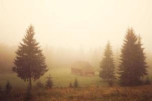 cabine no campo