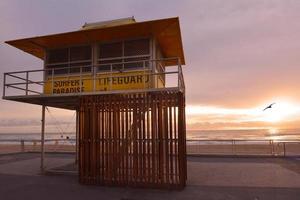 surfistas paraíso esplanade queensland austrália foto