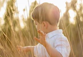 garoto no campo brincando com espinhos ao pôr do sol de verão