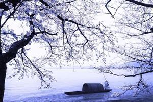 temporada de sakura em kaizu osaki, japão foto