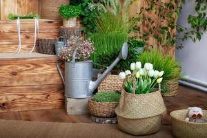 tulipas brancas flores em uma cesta foto