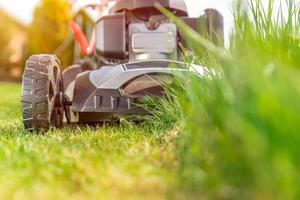 cortador de grama em ação foto