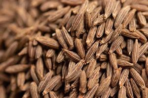 sementes de cominho secas