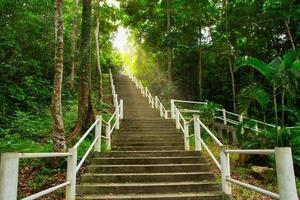 trilhas naturais