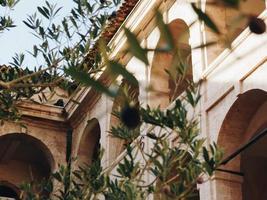 edifício bege através de folhas verdes