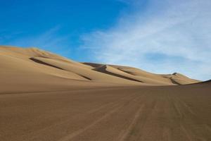 dunas de areia marrom foto