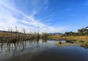 reflexo das árvores e céu no rio foto