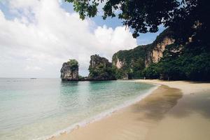 penhasco coberto de árvore perto do mar foto