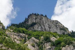 olhando para a montanha coberta de árvores foto