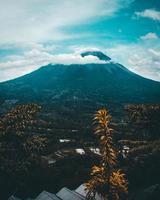 montanha e árvores foto