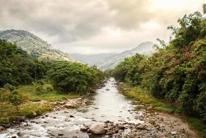 riacho rochoso ao lado de árvores foto